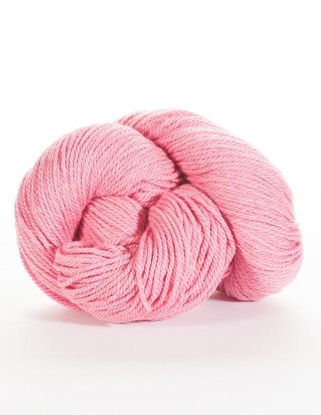 Zinnia Pink