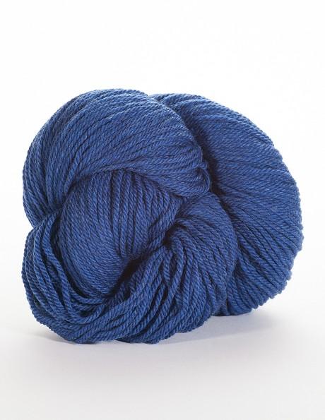 Michigan Blue